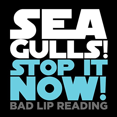 seagulls-stop-it-now