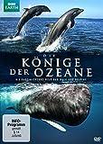 Die Könige der Ozeane kostenlos online stream