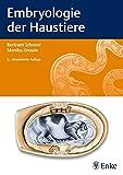 ISBN 3830411464