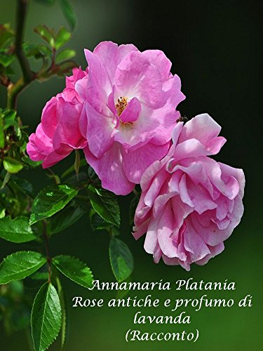 Rose antiche e profumo di