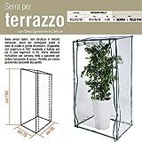 Serra terrazzo acciaio e PVC 95x70xh190 balcone giardinaggio piante fiori 647-26