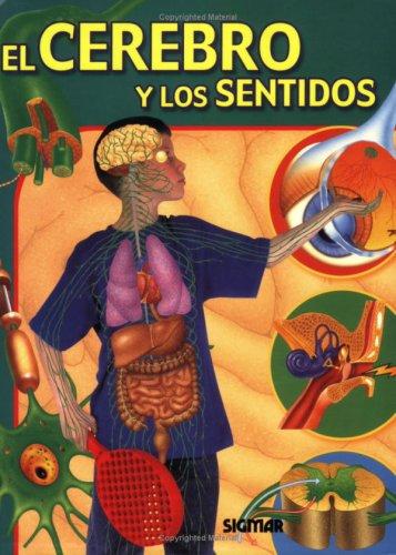 El cerebro y los sentidos/The Brain and the Senses par Jen Green