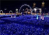 Weihnachten Net Lichter 8 * 10 meter 2600 LED Fairy Lichterketten Outdoor Party Weihnachten Hochzeit Hausgarten Dekorationen 8 Modi nachtlichter Festival Geschenk (blau, bunt) (Farbe : Blau-)