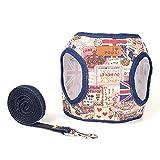 Kit de harnais et de laisse Sanfeng - En jean - Idéal pour les animaux de compagnie (chiens et chats) de taille petite et moyenne - Pour promenade, dressage, course, randonnée...