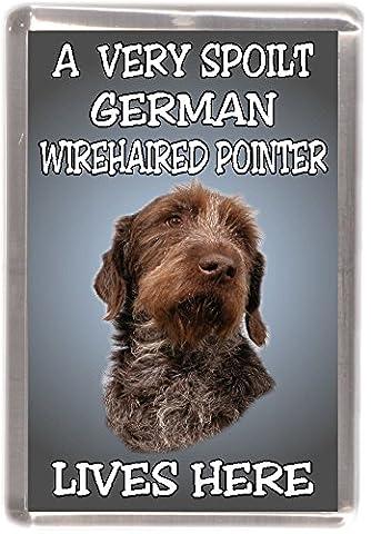 German Wirehaired Pointer Dog Fridge Magnet