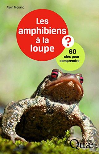 Les amphibiens à la loupe ?: 60 clés pour comprendre