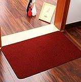 TQ Tappetini Antiscivolo, Pavimento Per Ingresso Domestico, Stuoie Resistenti All'usura (Dimensioni: 40 * 60 Cm),Red