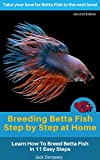 Breeding Betta Fish Step by Step at Home: Learn How To Breed Betta Fish In 11 Easy Steps