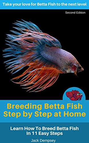 Breeding Betta Fish Step by Step at Home: Learn How To Breed Betta ...