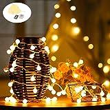 LEDGLE Globe Lichterkette mit Fernbedienung Globe String Light, Warm Weiß, 8 Beleuchtungsmodi, Batteriebetrieben, IP65 wasserdicht