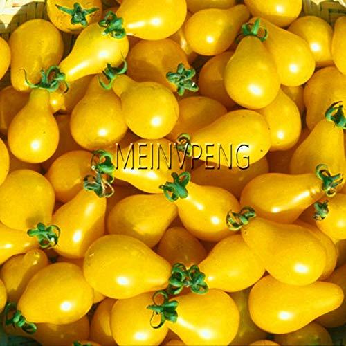 Pinkdose Meistverkauft!Sorte Kirschtomaten Bonsai Balkon Obstpflanzen Gemüse Topf Bonsai Topfpflanze Tomatenpflanzen, 100SEED: 5