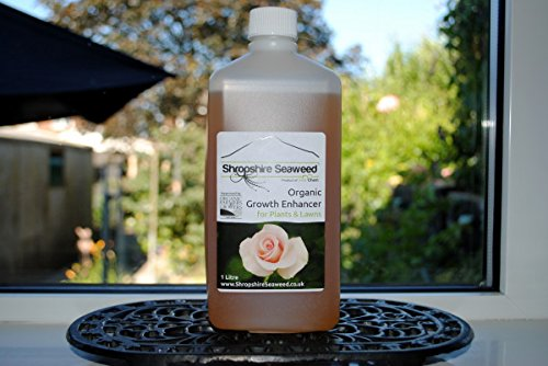 Organic Liquid Seaweed Plant Fertilizer – 1 Litre