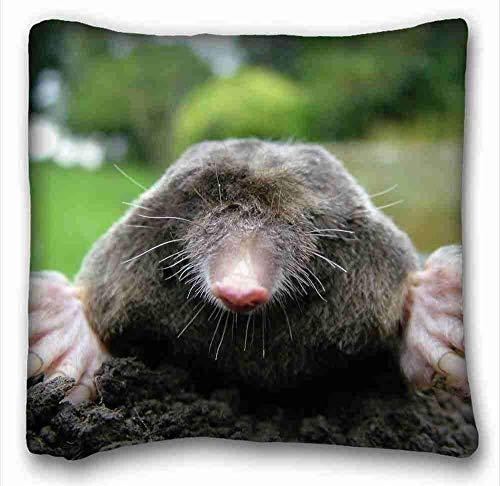 KENETOINA Custom (Animals mole dirts dig face) Pillowcase Standard Size 1818