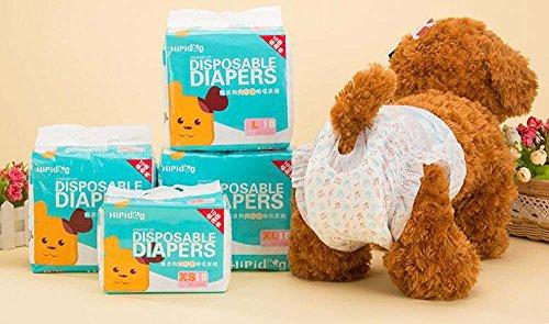 10 Unids Perros menstruales Desechables Envolturas para la menstruación Pañales de papel Pantalones cortos para perritos Ropa interior Panty L (cintura 11-15.2 pulgadas, peso 13.2-25.2 libras)