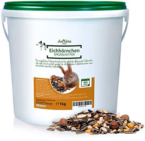AniForte Wildlife Premium Eichhörnchenfutter 1 kg für Eichhörnchen und Streifenhörnchen - Naturprodukt Mischung, Besondere und artgerechte Eichhörnchen Fütterung - Unsere Spezial Futtermischung