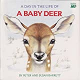 A Day in the Life of a Baby Deer: The Fawn's First Snowfall
