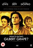 What's Eating Gilbert Grape [DVD] [1993]