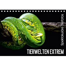 Tierwelten Extrem - Spektakuläre Tierfotos (Tischkalender 2017 DIN A5 quer): Der Tierkalender der Lust auf den nächsten Zoobesuch macht. (Monatskalender, 14 Seiten ) (CALVENDO Tiere)