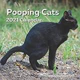 Pooping Cats Calendar 2021: Funny Cat Lover Wall Calendar Gag Joke Gift - Women, Men, Crazy Lady, Birthday, White…