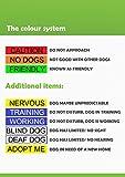 """Dexil Personalisierbares Hunde-Halstuch, Aufschrift """"Friendly"""", Grün, modisches Halstuch, verhindert Unfälle durch Vorwarnen anderer Hunde - 3"""