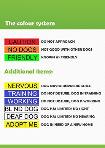 Deaf Dog Dog Has Limited No Hearing White Colour Coded S M L Xl