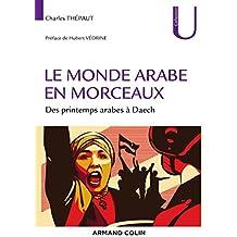 Le monde arabe en morceaux : Des printemps arabes à Daech (Collection U)