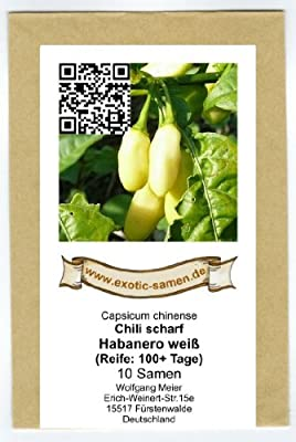 Extrem scharfes, weißes Chili - Habanero weiß - weiss - Habanero white - 10 Samen von exotic-samen - Du und dein Garten