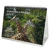 Giraffenzauber · DIN A5 · Premium Tischkalender/Kalender 2019 · Giraffe · Giraffen · Afrika · Tiere · Wildnis · Natur · Geschenk-Set mit 1 Grußkarte und 1 Weihnachtskarte · Edition Seelenzauber
