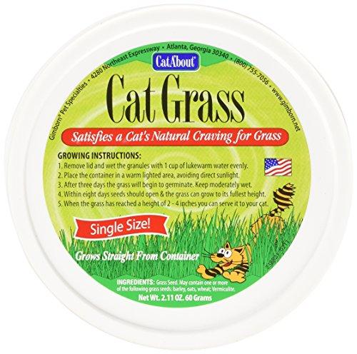 cat-about por miraclecorp Gimborn único gato hierba Plus, 60-gram