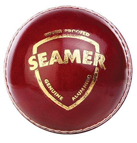 SG Seamer Leather Cricket Ball, Pack of 2 (Red)