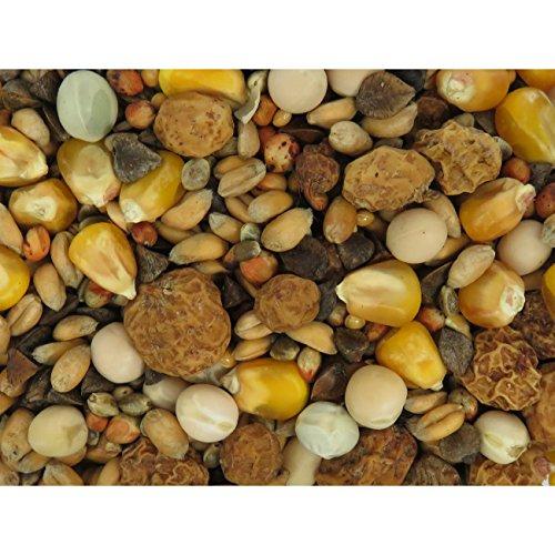 Karpfenhans Partikelmix Extra Karpfen Partikel 1 kg