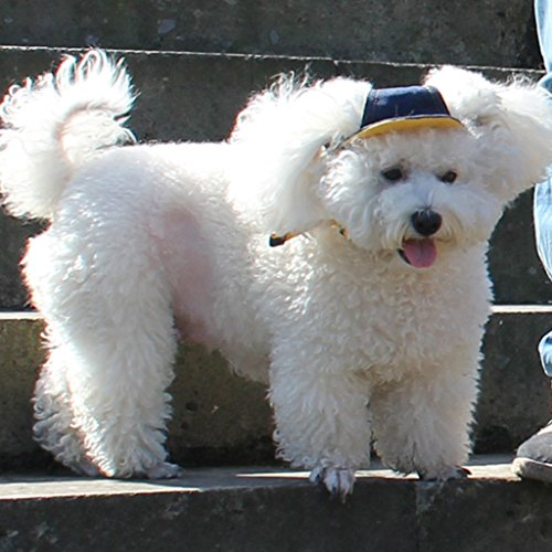 SM SunniMix Hund Baseball Cap Visier Hut Einstellbar Sunbonnet Sonnenmütze Mit Ohrlöchern - Blau, S
