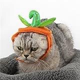 Pet OnlineCat hat cabeza adornos Halloween Dress Up calabaza pequeña hat cat head ornamentos