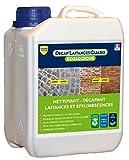Nettoyant pour sols biodégradable et sans neutralisation Guard Industrie DECAP SOLS GUARD 2L