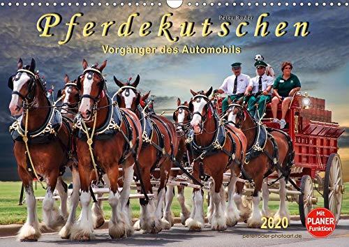 Pferdekutschen - Vorgänger des Automobils (Wandkalender 2020 DIN A3 quer): Kutschen, früher Statussymbol und das Reisefahrzeug schlechthin. (Geburtstagskalender, 14 Seiten ) (CALVENDO Tiere)