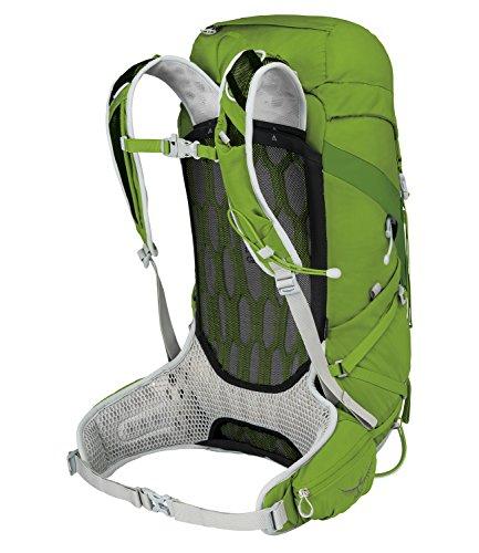Osprey Herren Talon 33 Ii Wanderrucksäck spring green