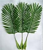 Woop 64 cm Deko Kokos-Palmwedel- Künstliche Wedel / Kunstpalme,44 x 27 cm 10er Pack,Grün