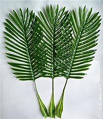 Idea Regalo - Woop 10PCS 64 cm artificiale singola foglia di palma.Green