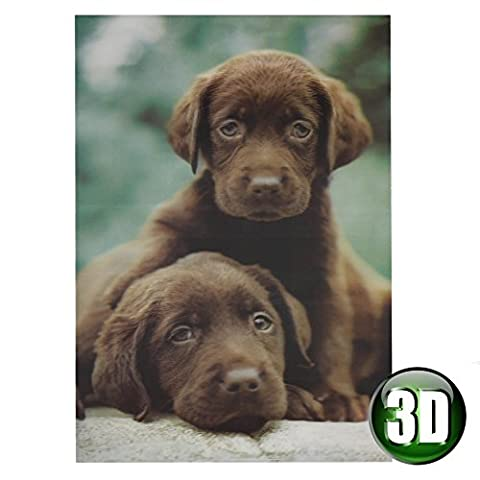 Best of Breed 3D Picture 34cm Wooden Wall Art - Chocolate Labradors
