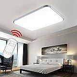 Hengda® 48W LED Deckenleuchte Panel Dimmbar Fernbedienung Badleuchte Esszimmer Deckenlampe 320-4320LM