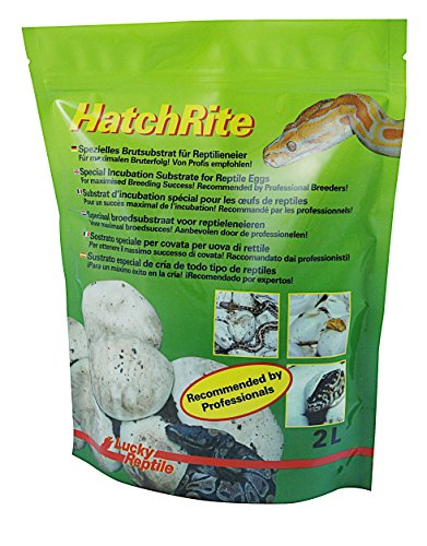 lucky-reptile-hr-2-hatchrite-2-litre