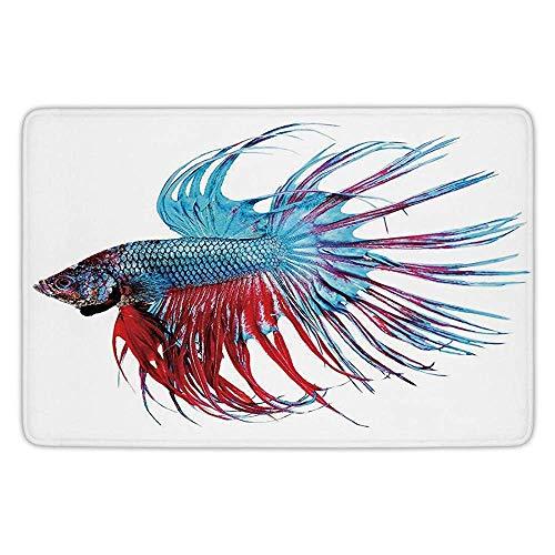 errterfte Aquarium,Fantastic Betta Fish Close Up Dragon Fish with Fringy Tail Tropic Aquatic Life Flannel Microfiber Soft Absorbent Personalized Mat
