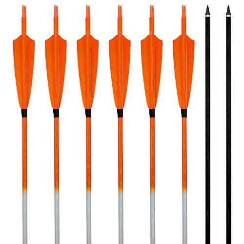 Bogenpfeile Kohlenstoff Carbonpfeil Archery sharly, 31 zoll Pfeile mit orangen Naturfedern und Farbverläufende Pfeilschaft für Recurvebogen und Langbogen