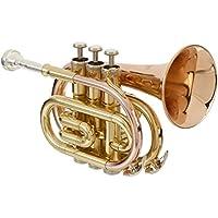 Musical Instruments & Gear Roy Benson Kinder Bb Waldhorn Mod.hr212b Lackiert Mit Formetui Brass