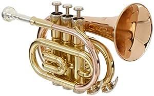 Roy Benson MOD.PT-101G BB Laquered Finish Pocket Trumpet with Light Rectangular Case