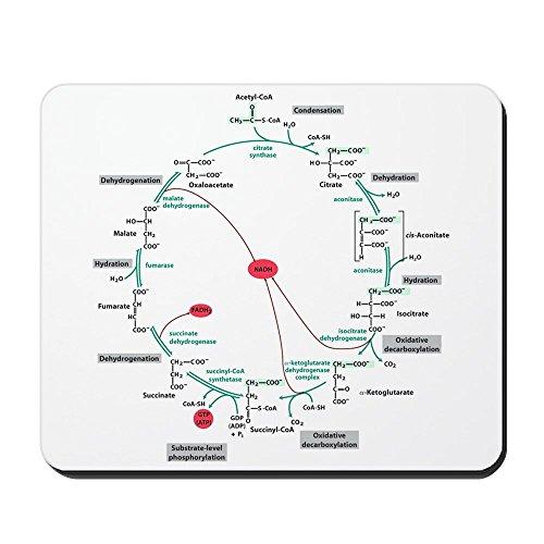 CafePress–Krebs-Cycle–rutschfeste Gummi-Mauspad, Gaming Maus Pad