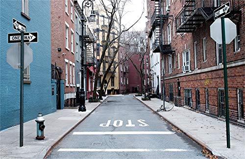 YongFoto 1,5x1m Vinyl Foto Hintergrund Historischer Gay Street Wegweiser New York City alte Gebäude Fotografie Hintergrund Fotostudio Hintergründe Requisiten