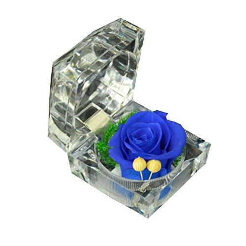 Tankerstreet Preserved rose fiore in acrilico anello, fatto a mano rosa novità regalo per San Valentino, fidanzamento matrimonio proposta di matrimonio Anniversary Birthday Christmas Mother S DAY blu navy