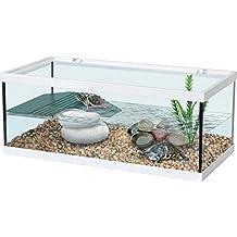 Vasche per tartaruga for Vasca per tartarughe grandi