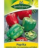 Paprika 'Neusiedler Ideal', 1 Tüte Samen